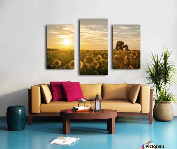 facing the sun Canvas print