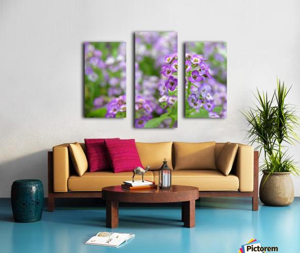 Beautiful Small Purple Flowers Photograph Canvas print