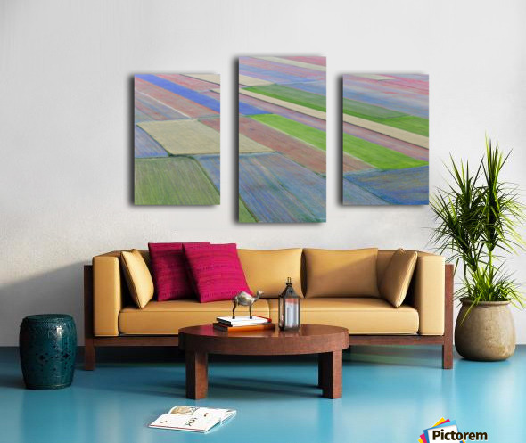 La fioritura di Castelluccio Canvas print