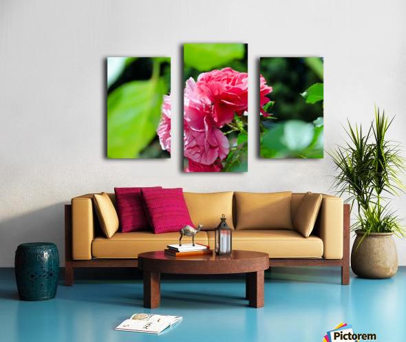 Rose Name Canvas print