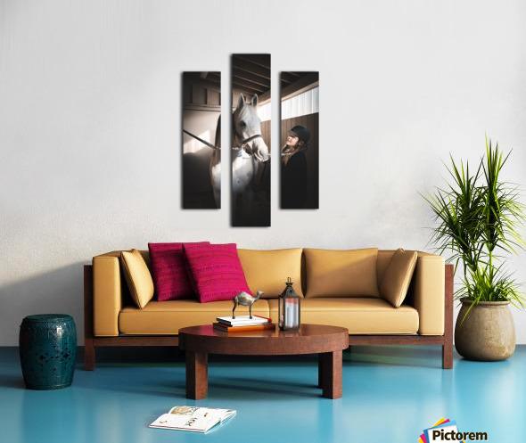 DSC00573 Canvas print