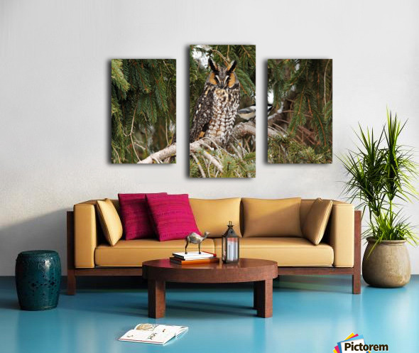 Brave Chickadee Canvas print