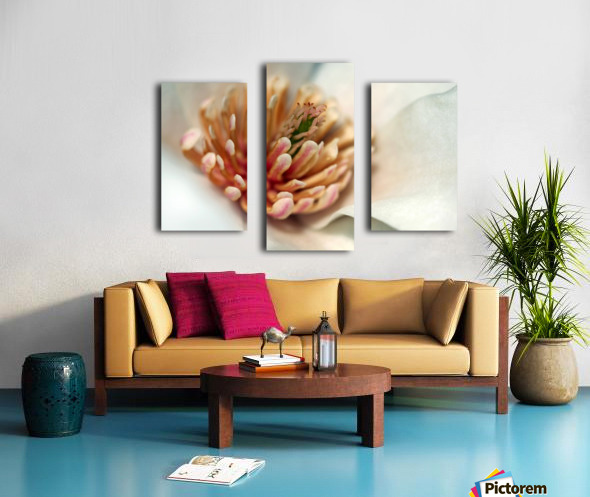 Magnolia Heart Canvas print
