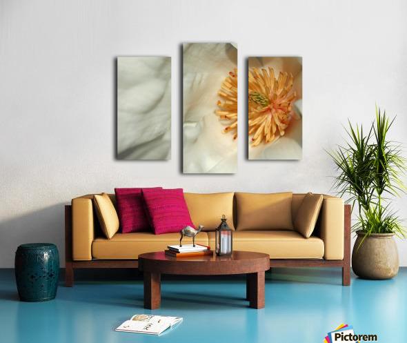 Magnolia Center Canvas print