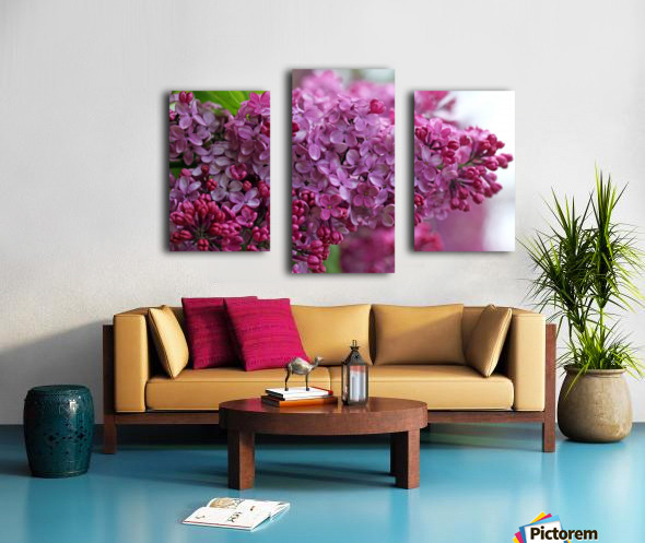 Lilac Heaven Canvas print