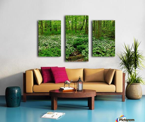 Trillium Woods VI Canvas print