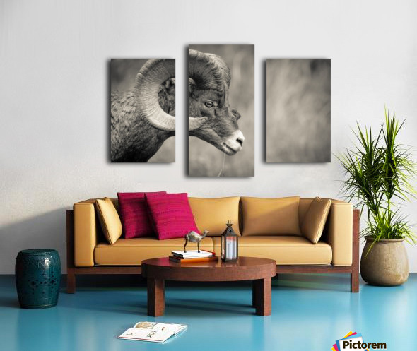 Head Strong Canvas print