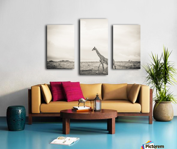 Zebrascape Canvas print