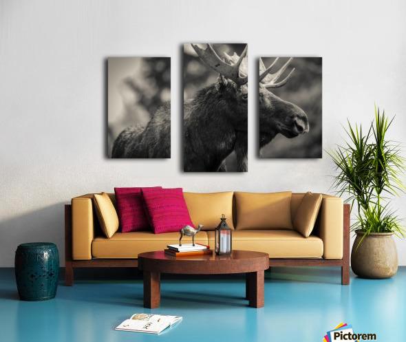 Moose Portrait - 2 Canvas print
