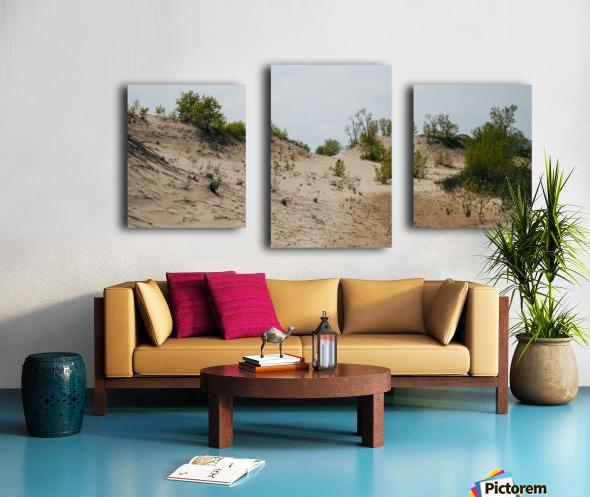 Sandbanks 2 Impression sur toile