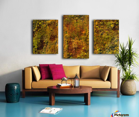 Voies Naturelles Impression sur toile