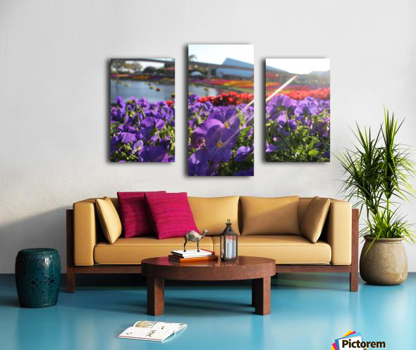 IMG_3668 Canvas print