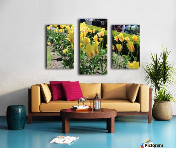 IMG_4036 Canvas print