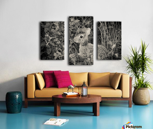 Do you see me Canvas print