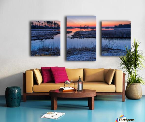 Black Duck Pool - APC-376 Canvas print