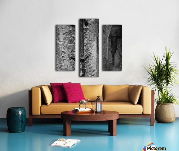 Winston Salem 100 Canvas print