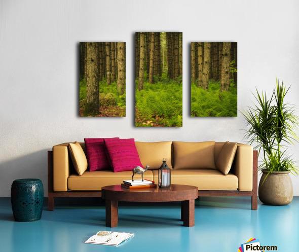 _S9A1813 Modifier Canvas print