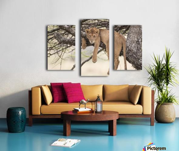 164A0128 Canvas print