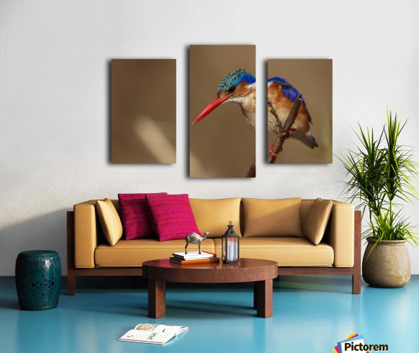 164A1043 Canvas print
