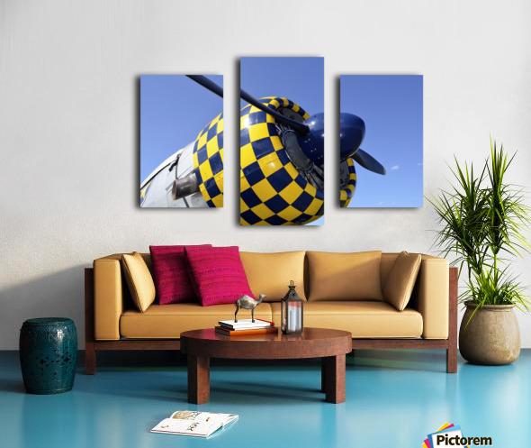 stk105465m Canvas print