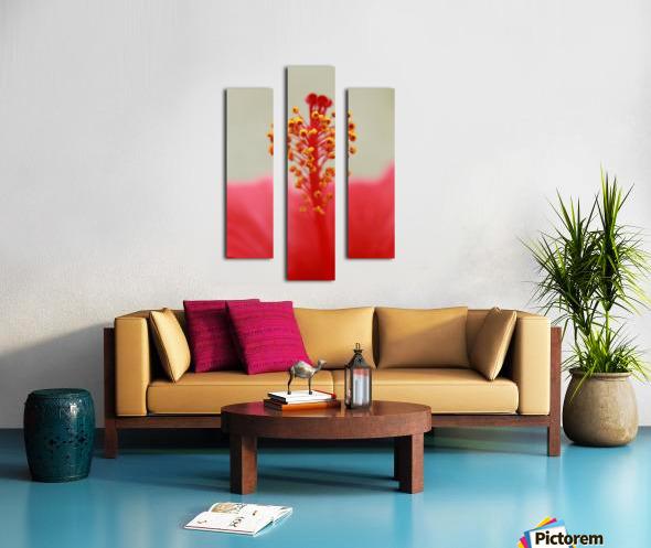 Hibiscus detail Canvas print