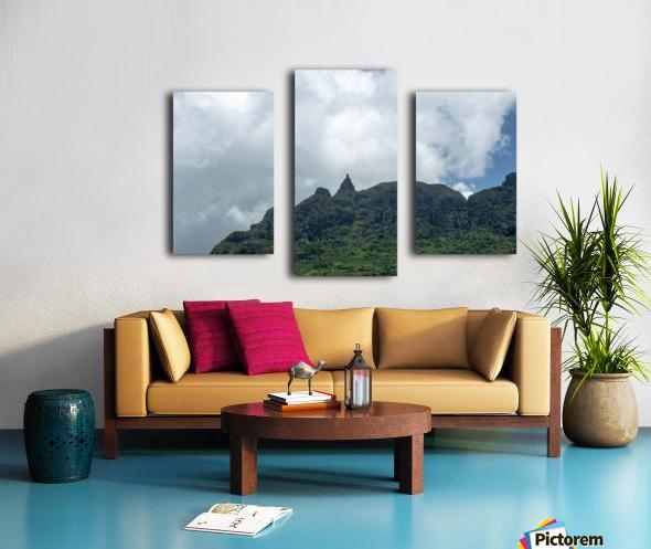 1 89 Canvas print