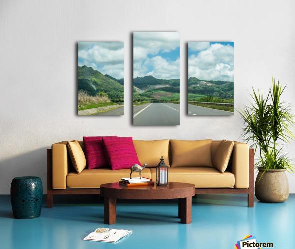 1 151 Canvas print