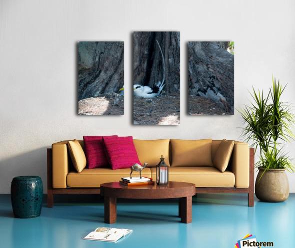 1 90 Canvas print