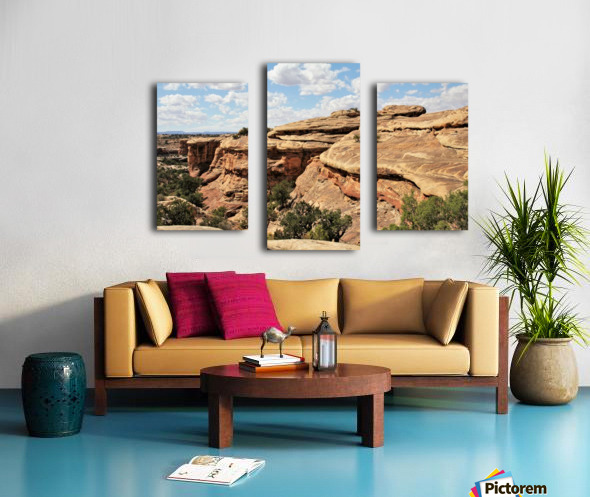 Canyonlands Canvas print