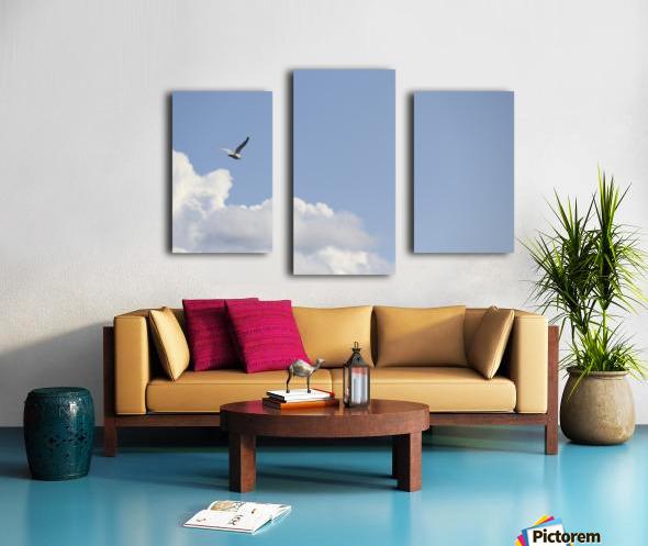 IMG_0245 Canvas print