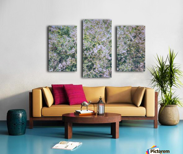 Pastel Meadow Grass Canvas print