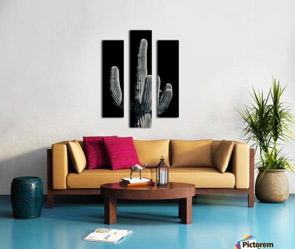 Saguaro 3 Canvas print