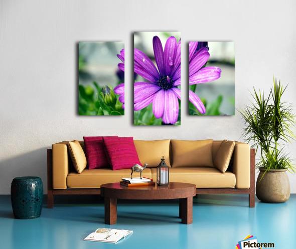 Waterdrop On Purple Flower Canvas print