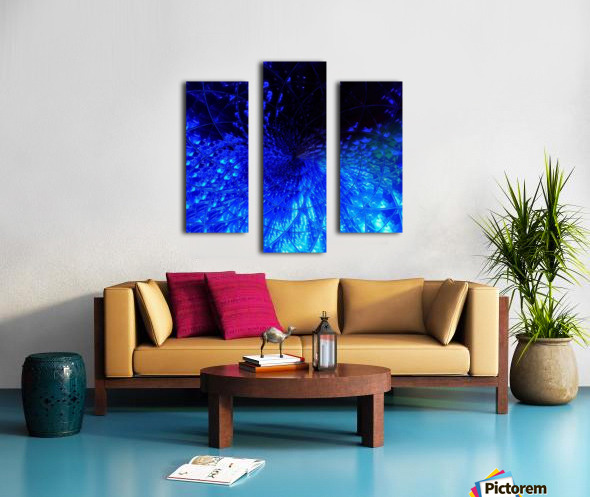 222_mirror24 Canvas print
