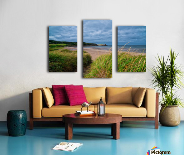 Sand and Grass Canvas print