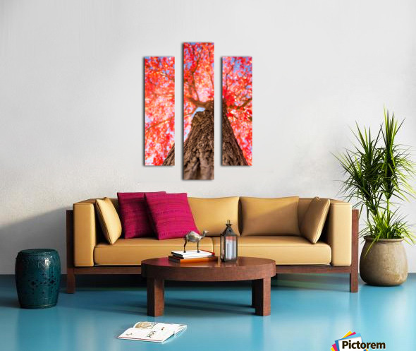 THE RED TREE Canvas print