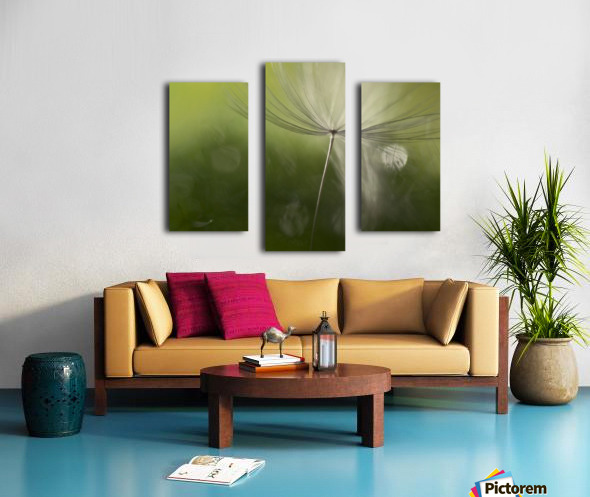 Shadows in the green Canvas print