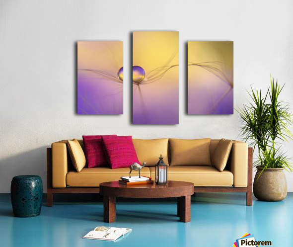 In arms Canvas print