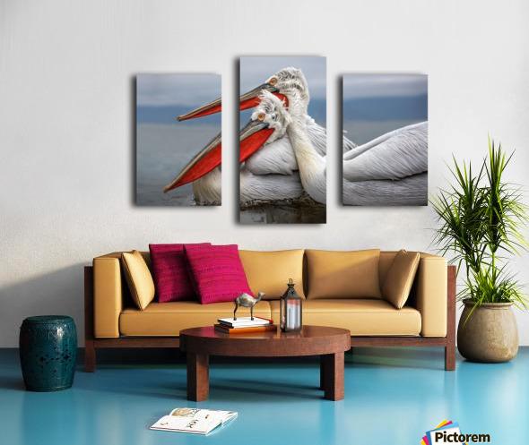 Dalmatian Pelicans Canvas print