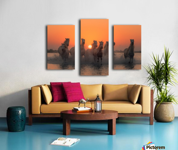 Sunset in Camargue Canvas print