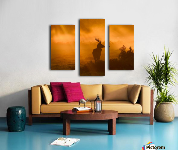 Guard Of Light Canvas print