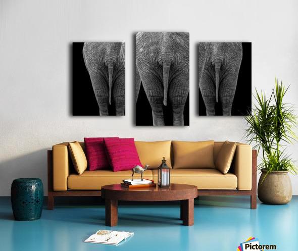 The Elephants Canvas print