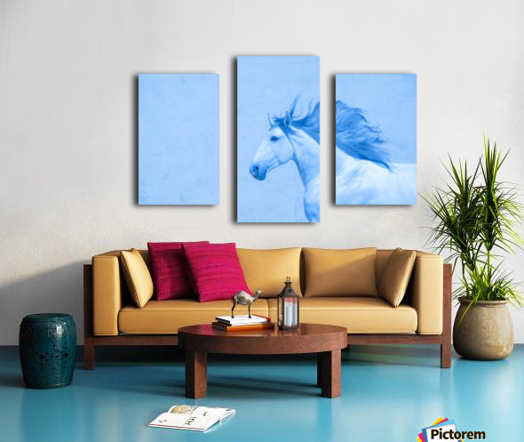 Blue Andalusian Horse 2 Canvas print