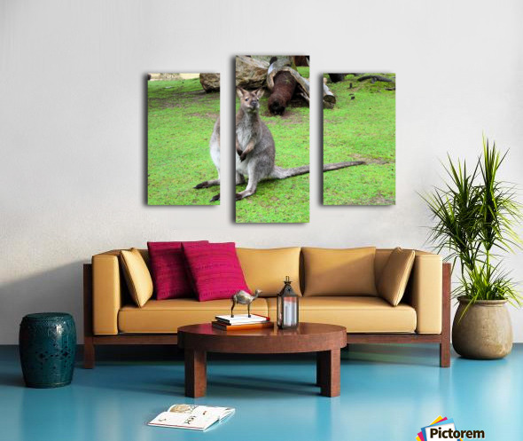 Animal16 Canvas print