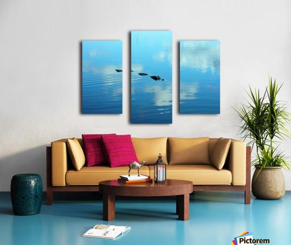 Everglades1 Canvas print