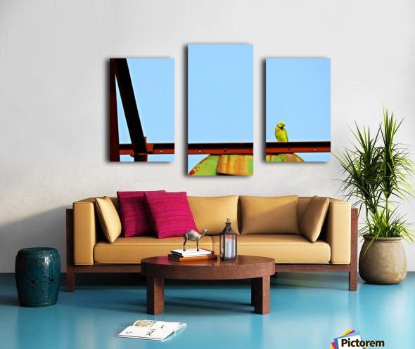 Balancing Canvas print