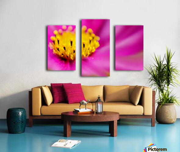 Pink Surprise Canvas print