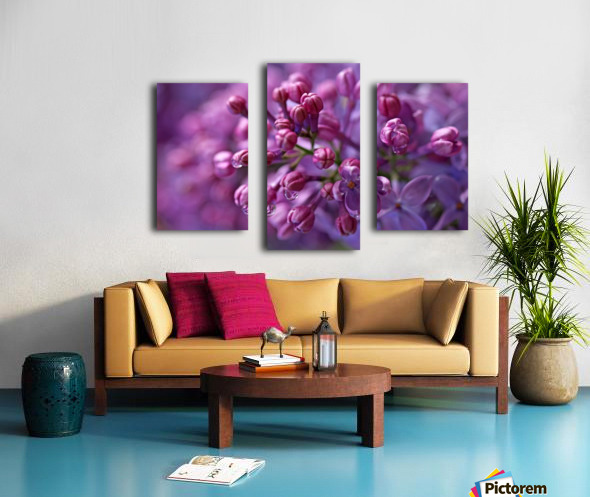 Dreamy Lilacs Canvas print