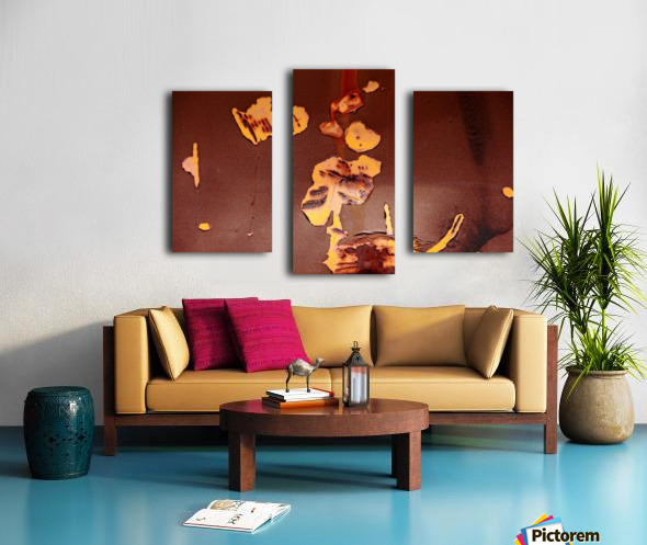 Watching Paint Peel Canvas print