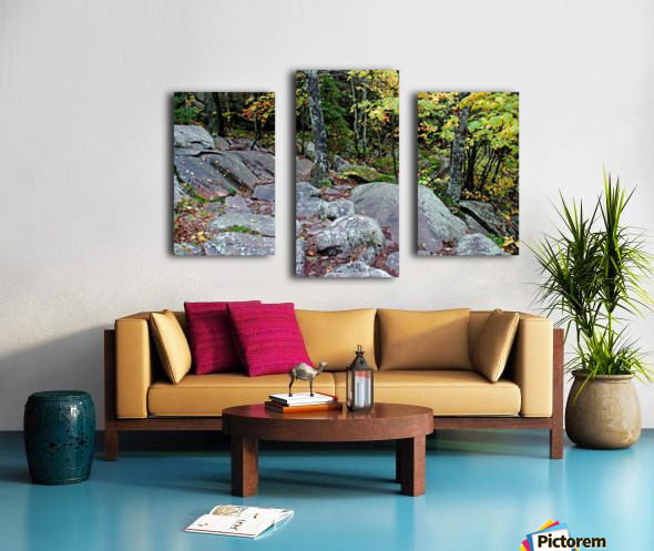 Chikanishing Trail Canvas print